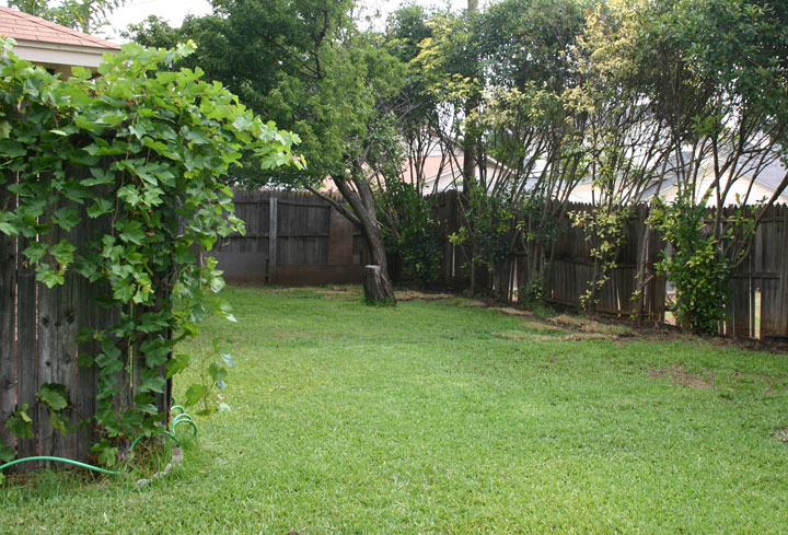 Large Backyard In The Watauga House For Rent. The Back Fence Was Replaced  In 2005 ...